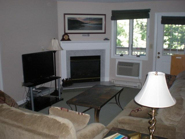 Living Room with Fireplace and Flat Panel LCD TV