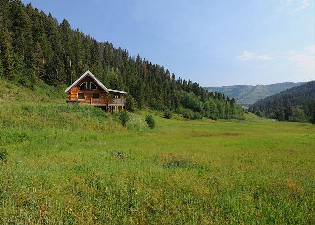 Cozy cabin in a quiet and lush mountain setting