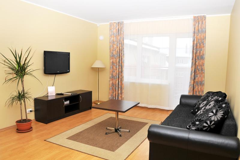 Living-Room - 1-Bedroom Apartment - Tallinn - rentals
