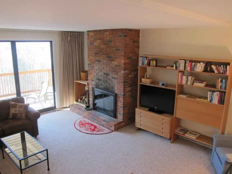 Large LR with wood burning fireplace & TV