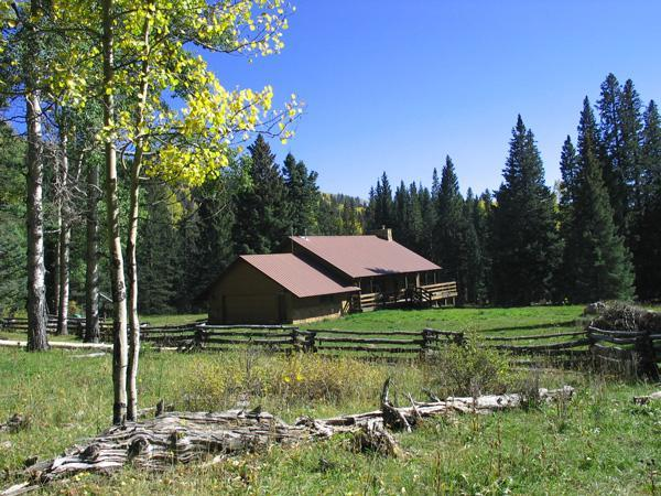 Home sits in meadow surrounded by National Forest