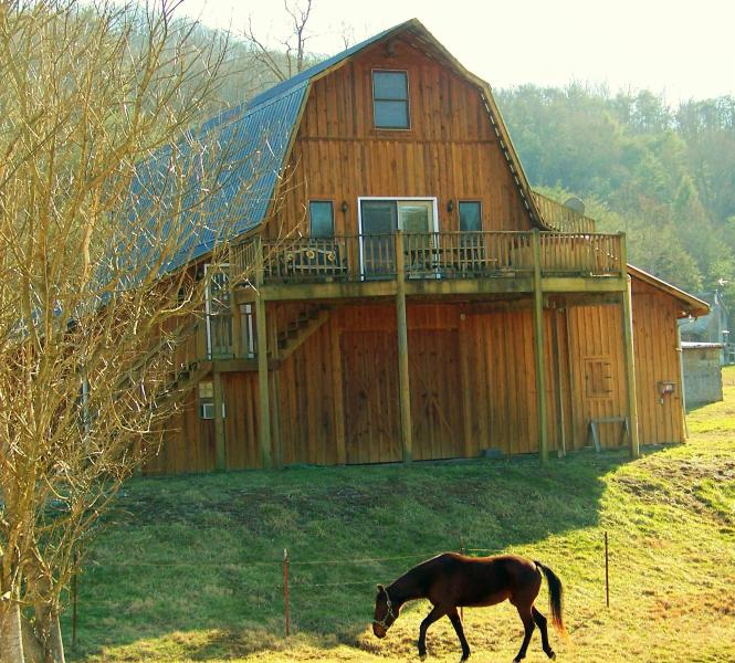 Hayloft Sky Cabin - available for large groups up to 12 - Country Manor's Hay Loft Sky Cabin - Free Fishing - Townsend - rentals