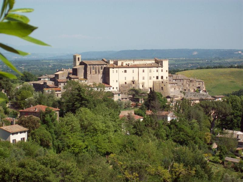 The village of Roccalvecce,the house sits below the right side of the white castle above the gardens.