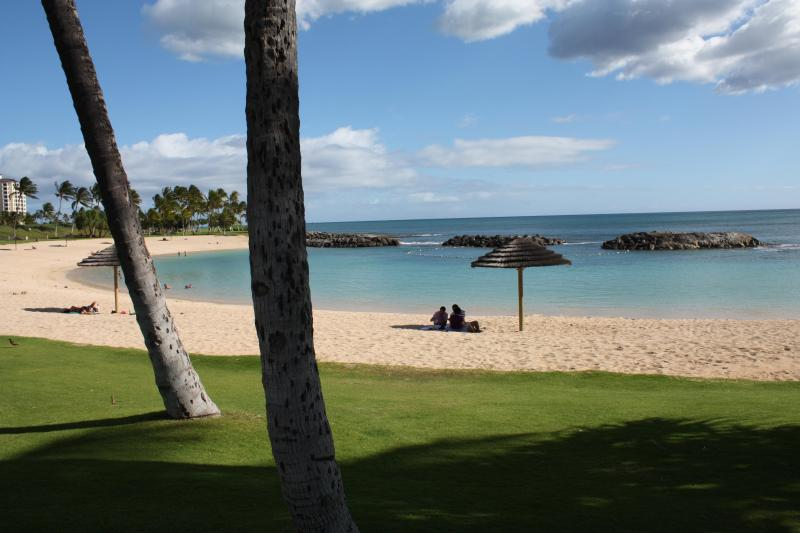 Beautiful Honu Lagoon - Only Steps Away!!!