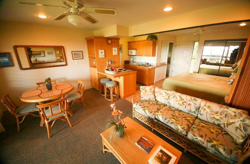 Napili Bay Condo. Spacious and functional with plenty of room for four. - Napili Village - Lahaina Vacation Condo Rental - Lahaina - rentals