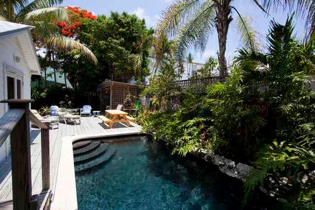 Tropical Yard