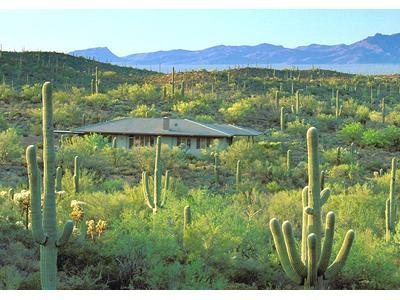 Tucson Retreat in Desert Wildlife Sanctuary