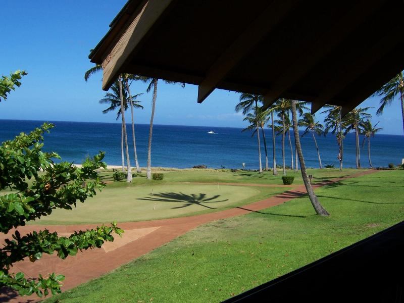 View from our Lanai with Whale Breaching