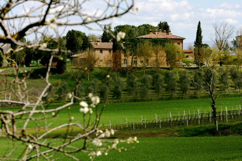 Casa Paterna and olive orchard from road