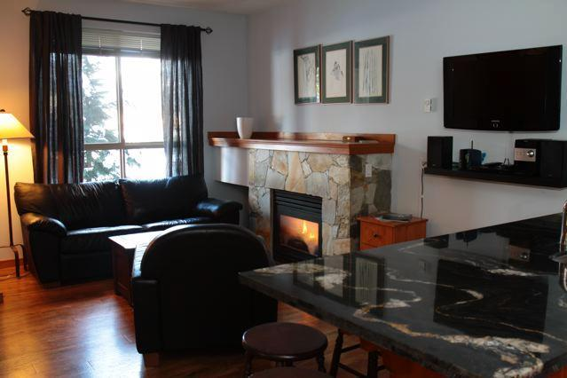 The cozy Living Area, complete with fireplace!