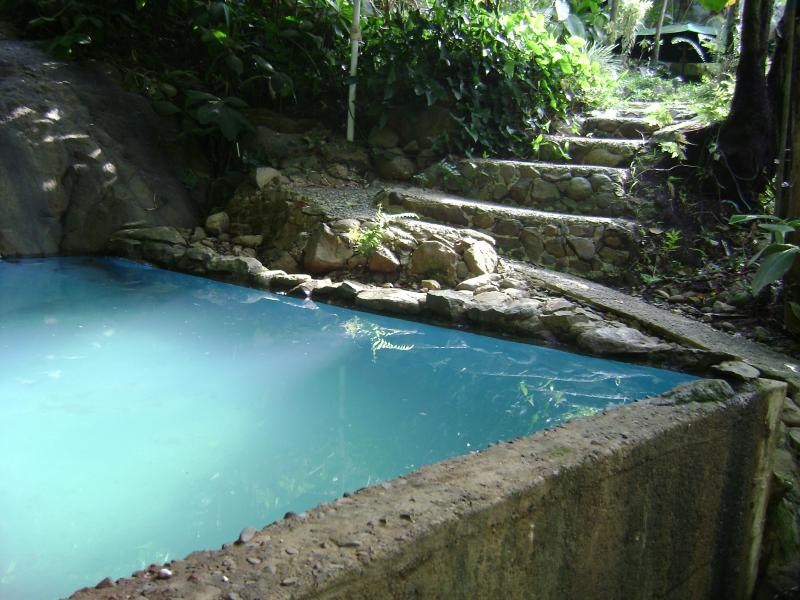 (Rated Excellent 2013) Nature swimming pool