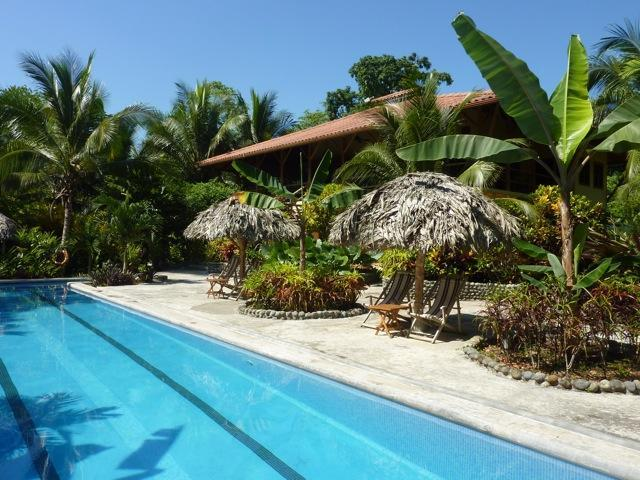 Relax! Our 65 foot pool sits in front of the Beach House - Bluff Beach Retreat - Bed & Breakfast on the ocean - Isla Colon - rentals
