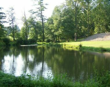 White Stone Manor (a wildlife habitat) Pond & Streams are exclusively on the home's property!