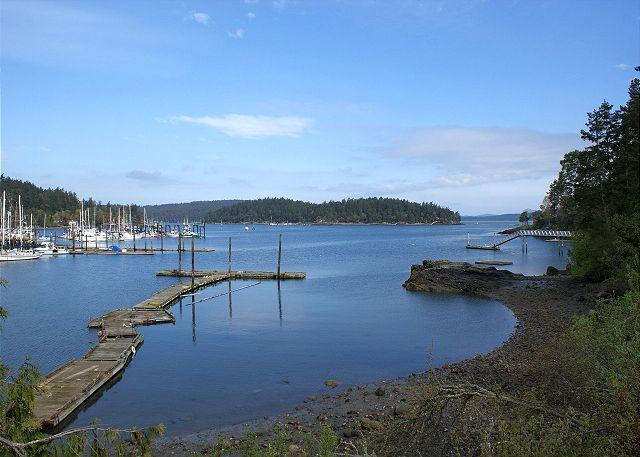 View of Shipyard Cove and Brown Island from property.