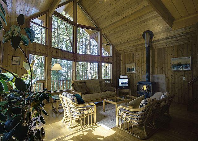 Open and spacious great room with cozy woodburning stove and satellite TV.