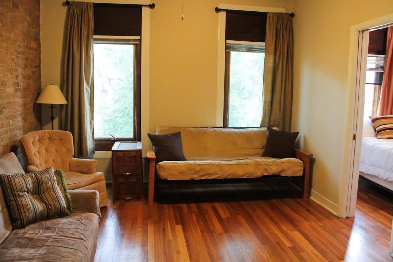 The Living Room with Futon and Extra Closet