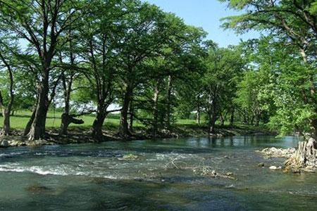 Sparkling clear rapids of the Guadalupe River