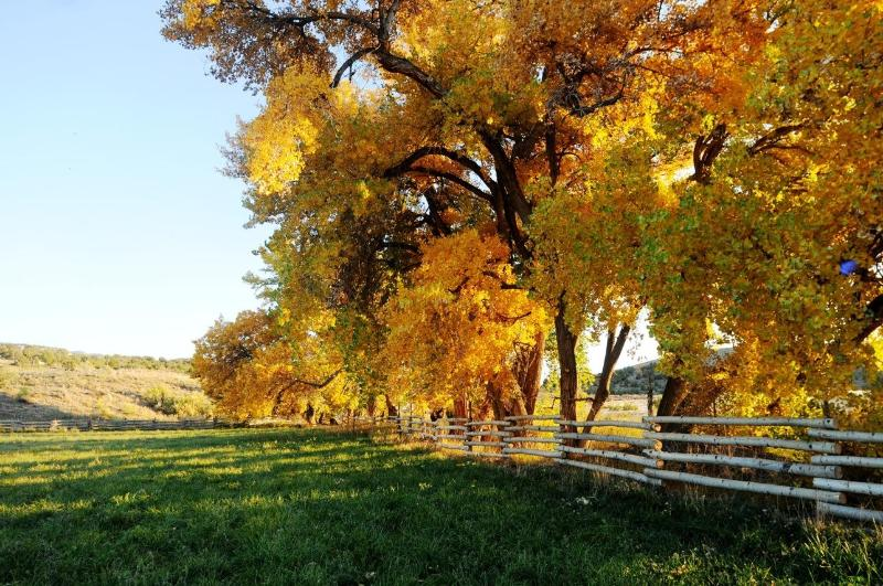 Ranch in the fall