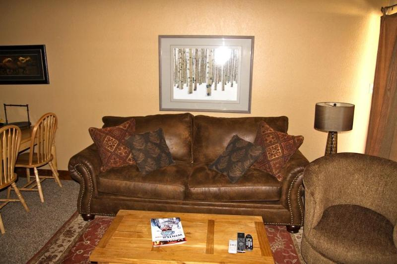 warm and inviting living room HD LCD tv wood burning fireplace great views!