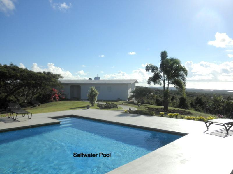2 house complex, glorious pool w/ views, privacy - Image 1 - Vieques - rentals