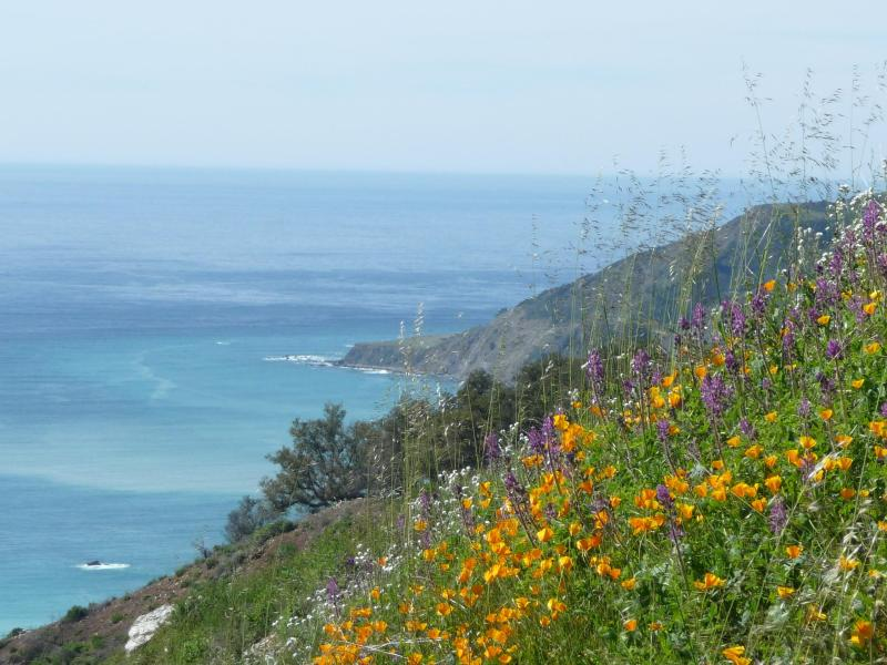 View of the Big Sur Coast