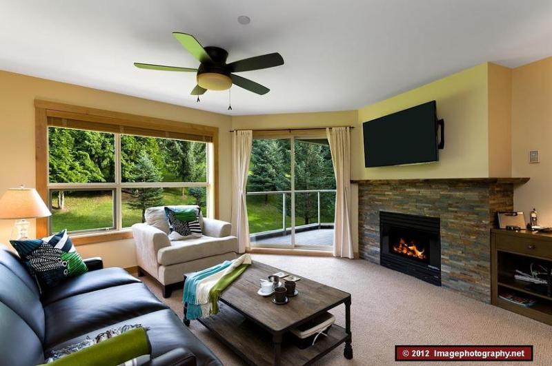 Newly renovated and gorgeous! This apartment was renovated in 2012 to 4 star quality. This is the living room, which faces east onto a green space. Note the trees outside the window. The black leather couch is also a queen sofa bed. To the right of the fi