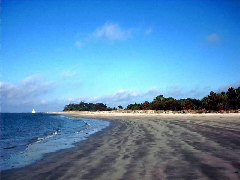 Pelican Beach looking north - Wonderful Beachfront Villa and Historic Charleston - Seabrook Island - rentals