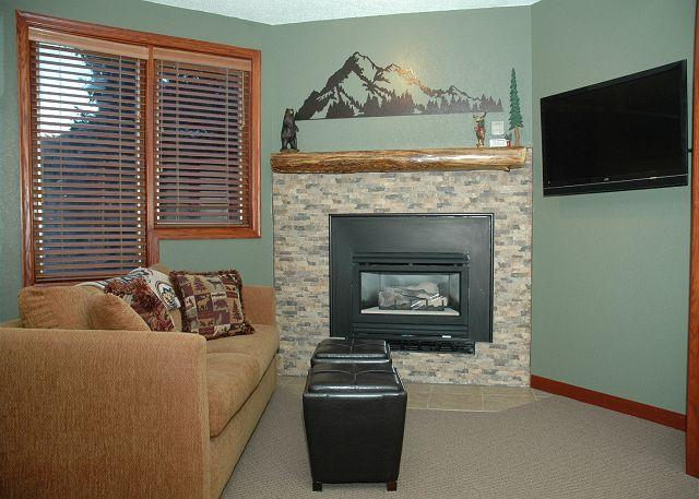 Living area w/Sofa Sleeper - Gas fire place - TV w/cable tv