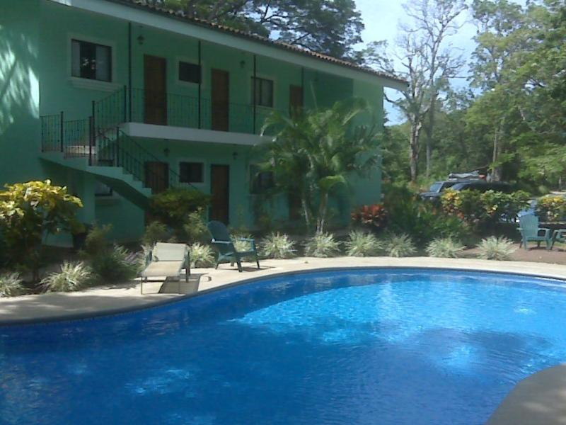 Green Forest of Coco Beach Studio