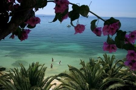 View 3 - VILLA PALMS-luxury beach accommodation 4-20 - Split - rentals