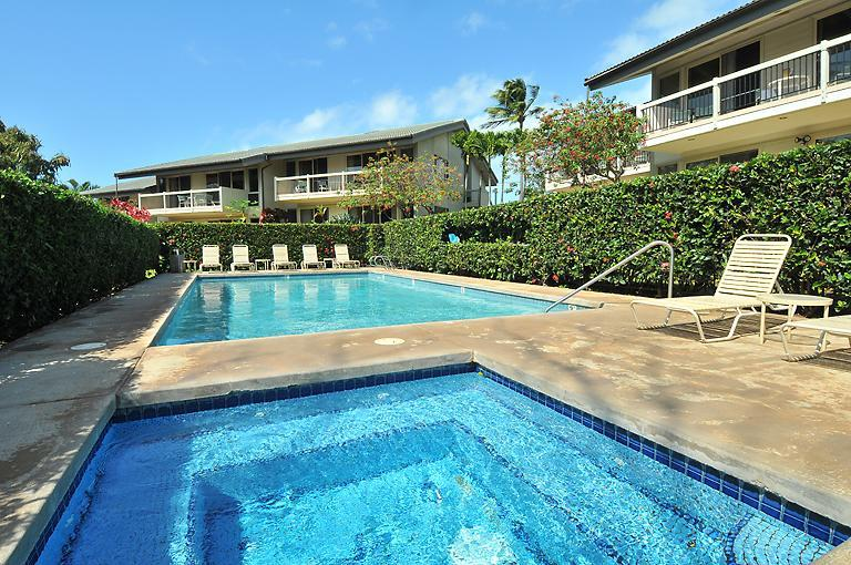 Priviate Hot Tub and Swimming Pool in Napili only for our guests.