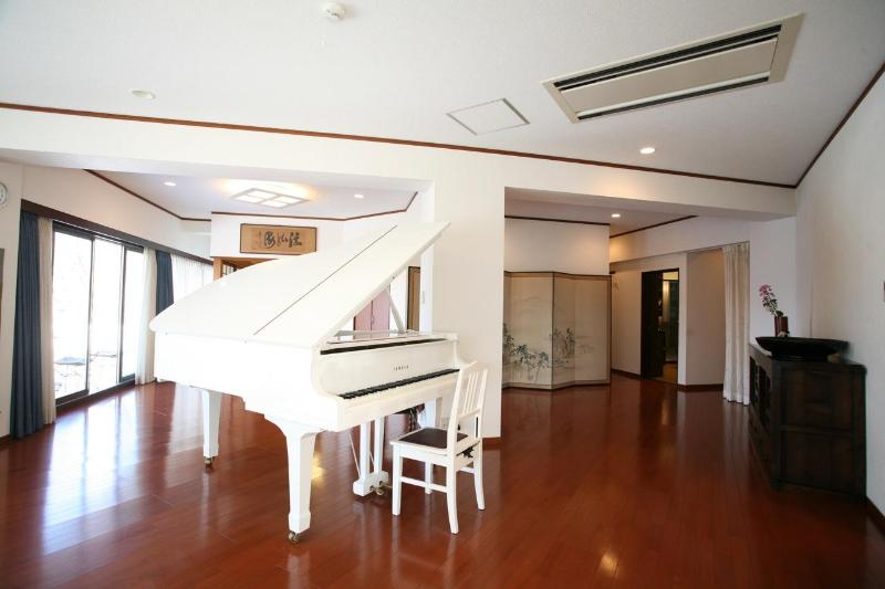 A wide living room with a lot of light and a magnificent piano