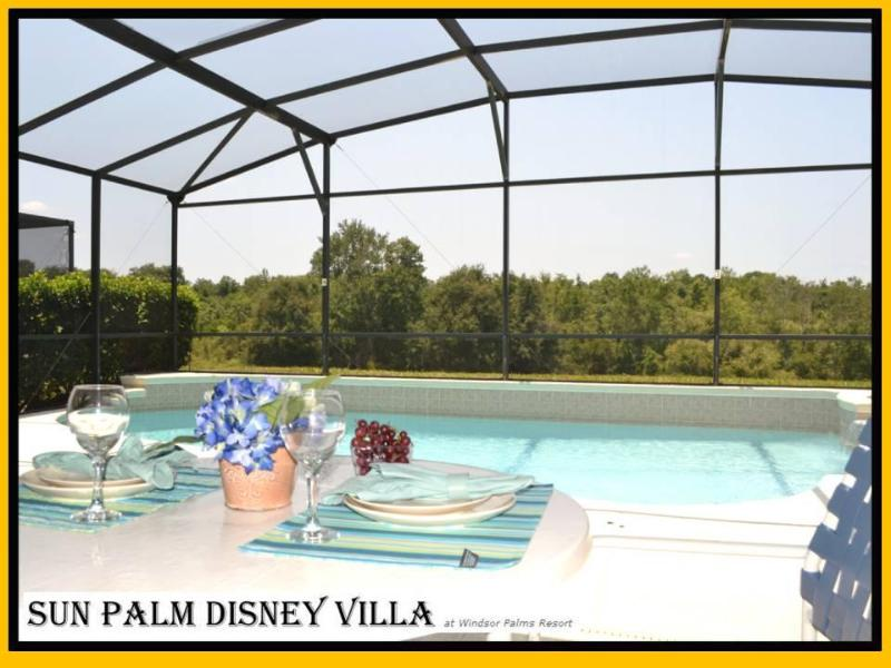 Sun Palm Disney Villa - Sun! Private Conservation View! No Chlorine Pool! - Kissimmee - rentals