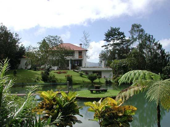 Villa Encantada ~~ Fine Luxury Villa Rental in the Heart of the Rain Forest w/ awesome 360 views