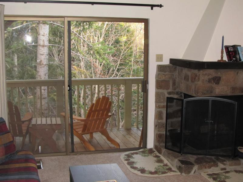 Upper deck and fireplace