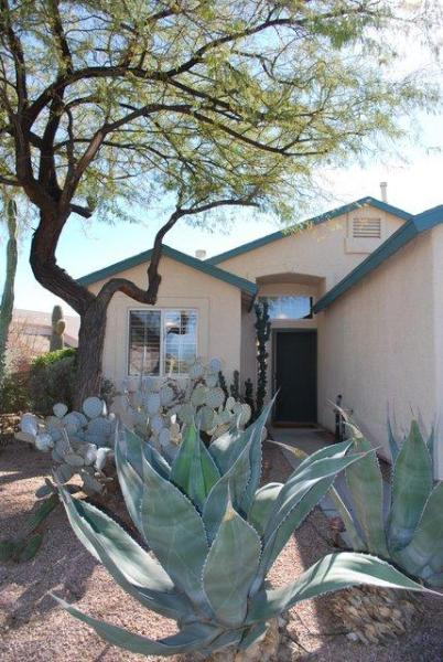 Enjoy our desert retreat, complete with mesquite trees, agave plants and plenty of cacti!