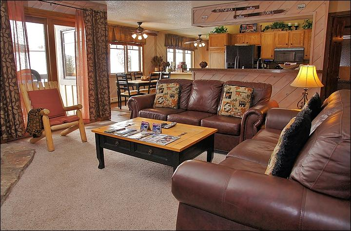 Plenty of Comfortable Seating in the Living Room - 2 Leather Couches