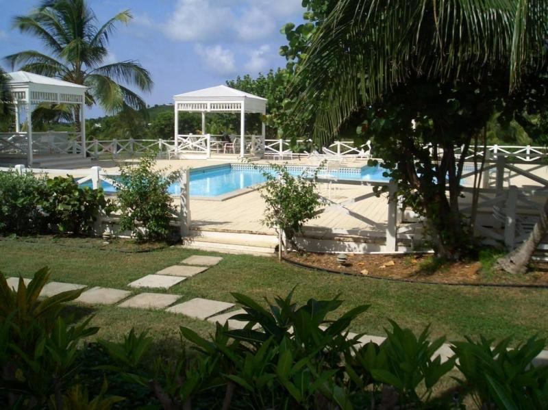 Pool view from inside the villa  - St. Croix Oasis Villa - Saint Croix - rentals