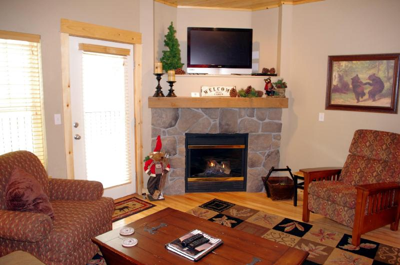 Living Room Fireplace - Listing #391805