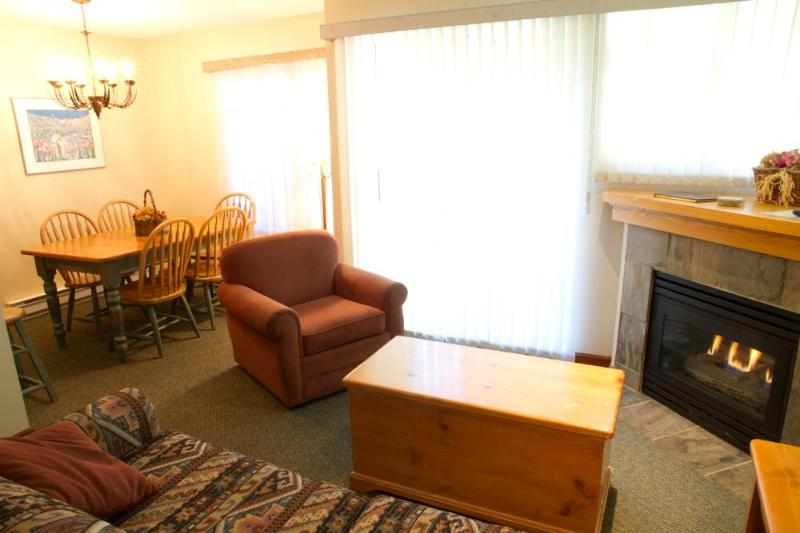 Living room with gas fireplace, flat screen TV and lovely, quiet patio
