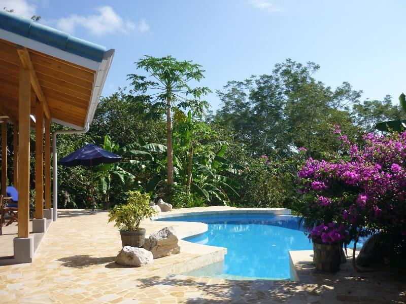 Welcome to Brisa del Pacifico, an eco-friendly home on a lush 2 acre lot