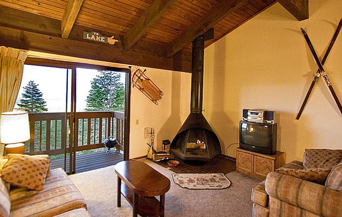 Mammoth Point #110 Living Area With A Wood Burning Fireplace And A Double Sofa Bed