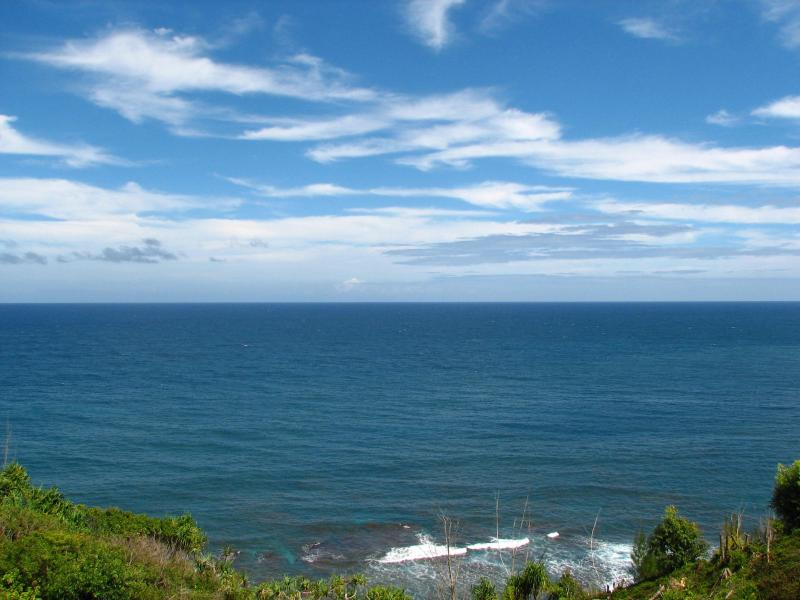 Spectacular unobstructed ocean view from lanai (front row seat to whale watch!)