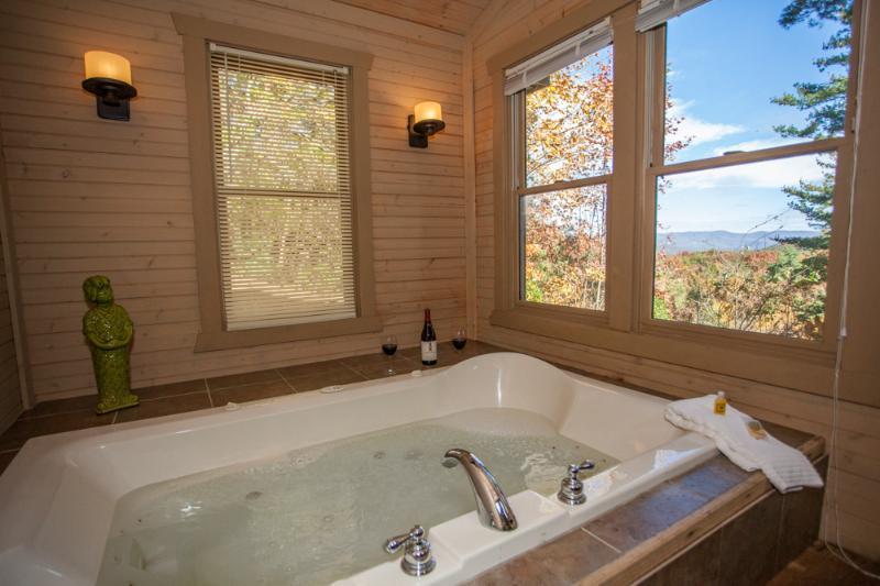 A Mountain View even from the Tub! - Ananda - Sauna and Mountain View! New Pictures!!!! - Chatsworth - rentals