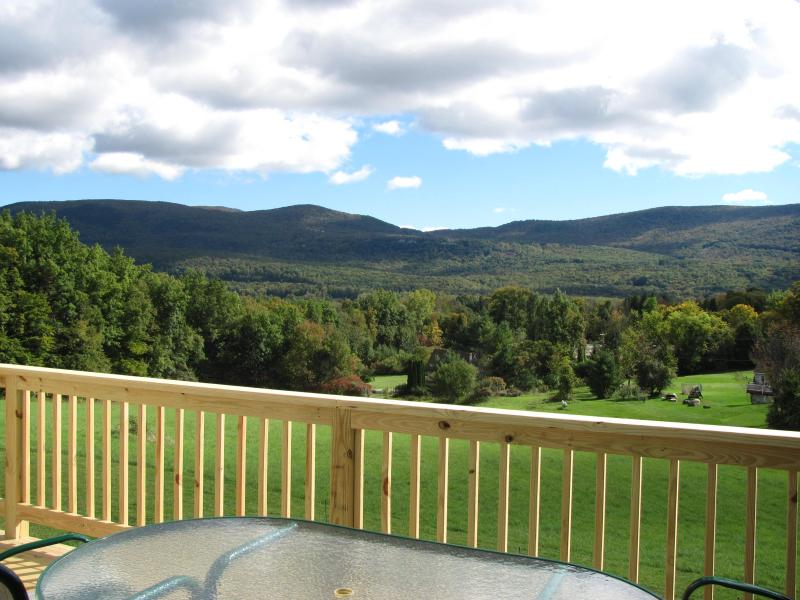 The view from the spacious deck ! - Brand New  3 bedroom home 3.5 baths on 3.8 acres! - Manchester - rentals