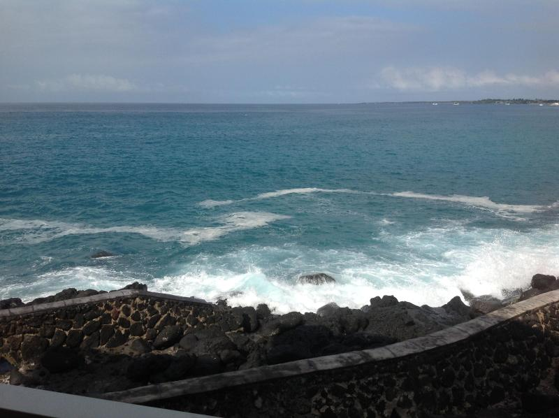 The view from living room lanai.