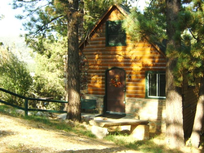 Cabin sits on a triple large lot, for added privacy.