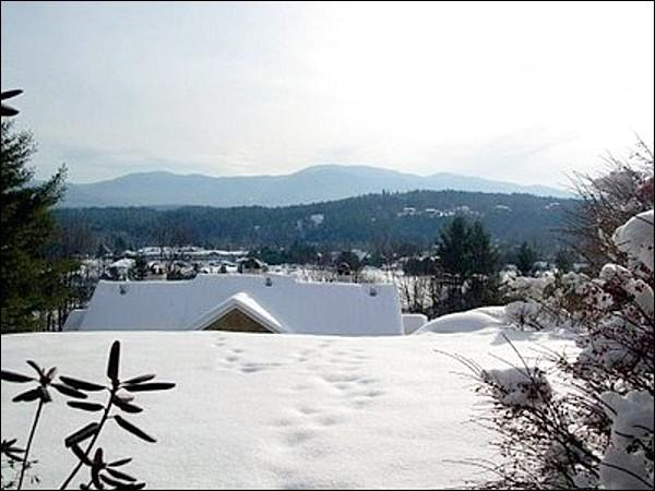 You Will Love the View from this Cozy Mountainside Condo