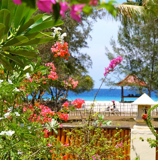 Beautiful beach view from the Villa