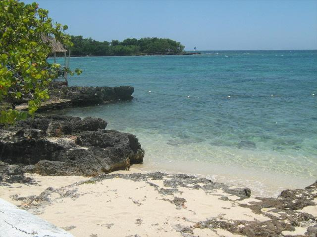 relax under the sea grape - Sea Grapes by the shore,  Ocean view with. phone, cable,  internet, phone! - Negril - rentals
